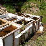 Dr Bill Burgos, PSU GeoSciences, pulling samples from Glasgow AMD Treatment Site, July 2017